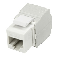 Cat 6 Keystone Jack White - Tool-Less
